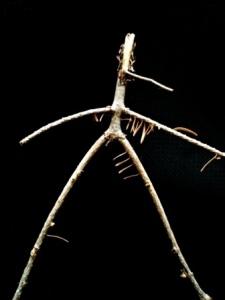 alien stickman1.2