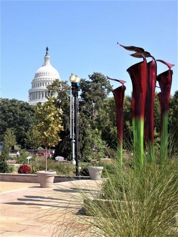 DC visit capitol1